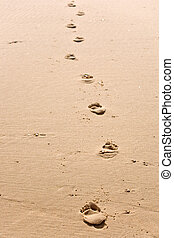 foosteps to nowhere - human footsteps on atlantic fine beach...