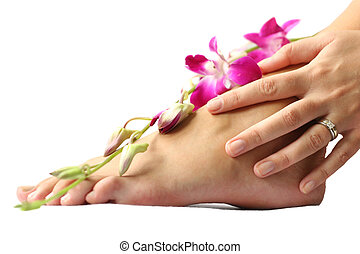 Foot and Orchid - Woman\\\'s foot and hand on white with...