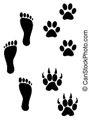 Foot and paw prints - Three Foot and paw prints
