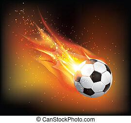 Foot Ball Fly