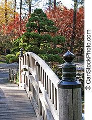 foot bridge in Japanese garden