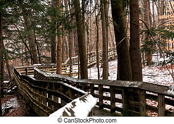 Foot Bridge in Winter