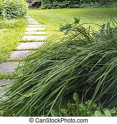 Foot Path In A Garden