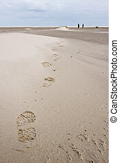 Foot print of woman walking in the sand dunes