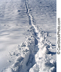 Foot-print in snow