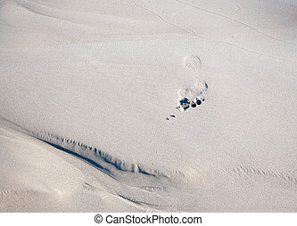 Foot print in wet sand.