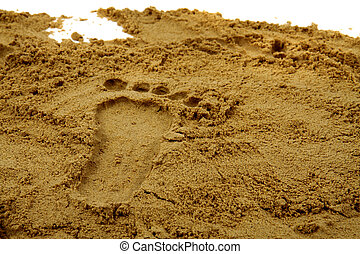 foot print - nice foot print in the yellow sand