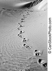 Foot Prints BW
