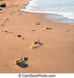 Foot prints on a sandy beach