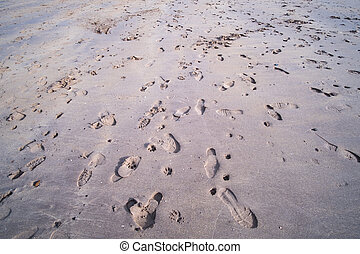 Foot prints on the beach