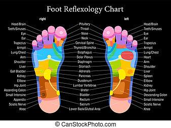 Foot reflexology chart black descri - Foot reflexology chart...