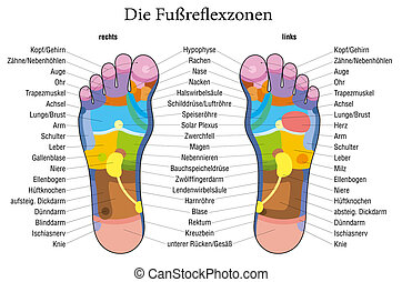 Foot reflexology chart german descr