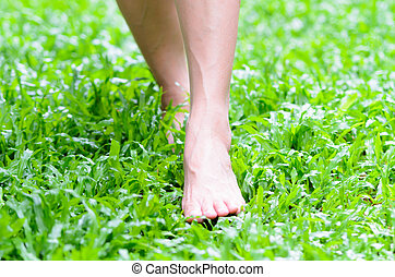 Foot step on green grass - Woman bare feet touching the ...