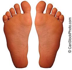 Foot - bottom of foot