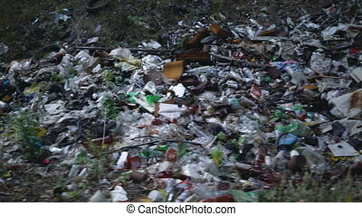 Footage Forest Pollution. Dump Garbage in Woods.