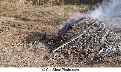 footage man burns leaves outdoors