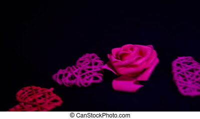 Footage move of rose and decoration heart. Valentine day