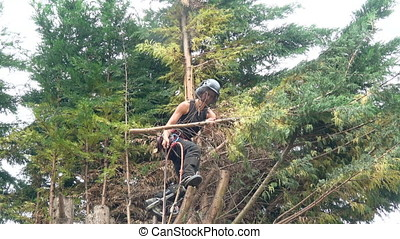 Female Tree Surgeon with a chain saw