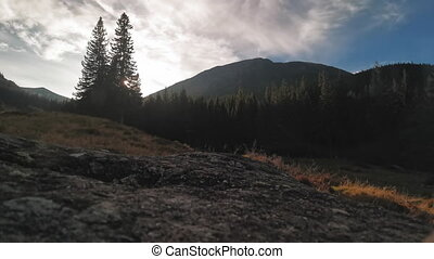 The camera is mounted on a Carpatian mountain bed overlooking pine forests with moving clouds with a change in exposure from dark to lighter.
