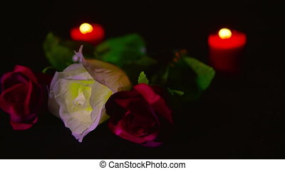 Footage of red and pink roses flower with red candle burning. Valentine day