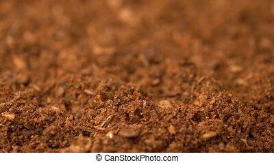 Footage Powder Harissa Spice rotate background. hot chili...