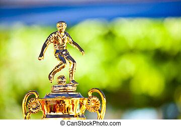football award