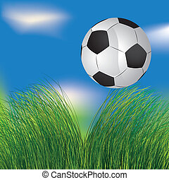 Football ball in the grass