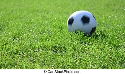 Close up black and white soccer football ball bouncing and rolling on green grass of turf field pitch stopping in front of camera, low angle view, 4K