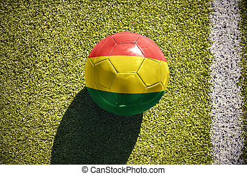 football ball with the national flag of bolivia lies on the field