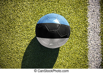 football ball with the national flag of estonia lies on the field