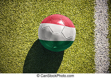 football ball with the national flag of hungary lies on the field