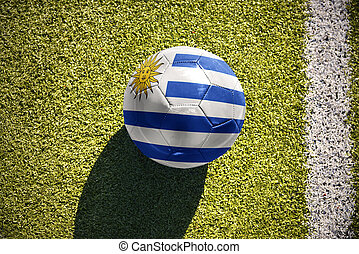 football ball with the national flag of uruguay lies on the field