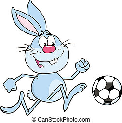 football, boule bleue, lapin