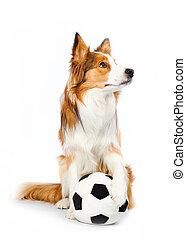 football, cane