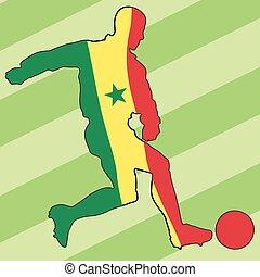 football colors of Senegal