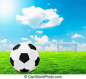 Football concept - Football on field with empty goal in background