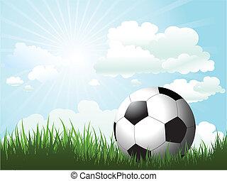 football, erba