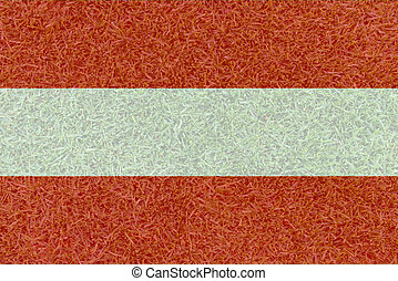 Football field textured by Austria national flag on euro 2016