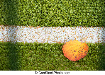 football field with autumn leaves