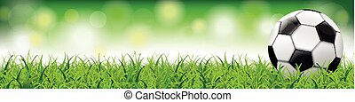 Football Grass Bokeh Background Long Header