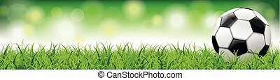 Football Grass Bokeh Background Long Header SH