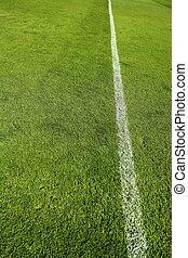 football grass field camp texture wite line - football green...