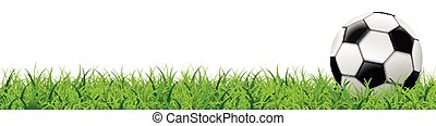 Football Grass White Background Long Header SH