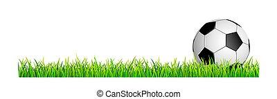 football, herbe pelouse, balle verte