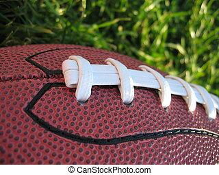 Football in Grass
