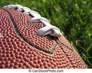 Football in Grass I