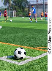 football in green grass