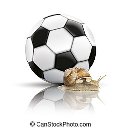 Football Mirror Background Snail