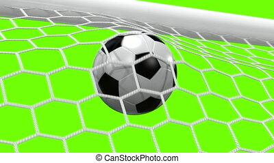 football, mouches, balle, goal!!!, but