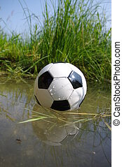 Football On Grass - Focus On The Grass .